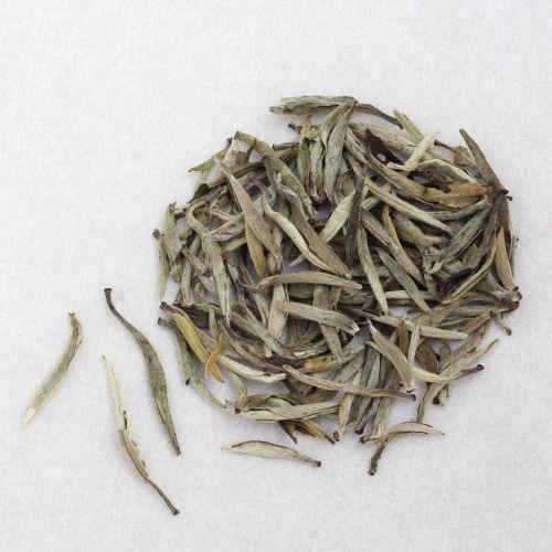 baihao yin zhen