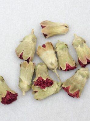 garoafa carnation